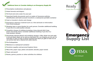 Ready.Gov Emergency List